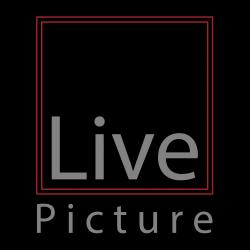 LIVEPICTURE SOLUTIONS SDN BHD